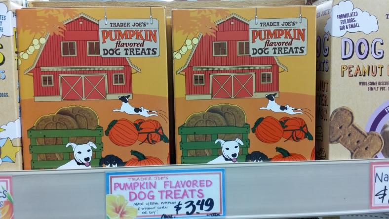 Tj's Pumpkin Dog Treats
